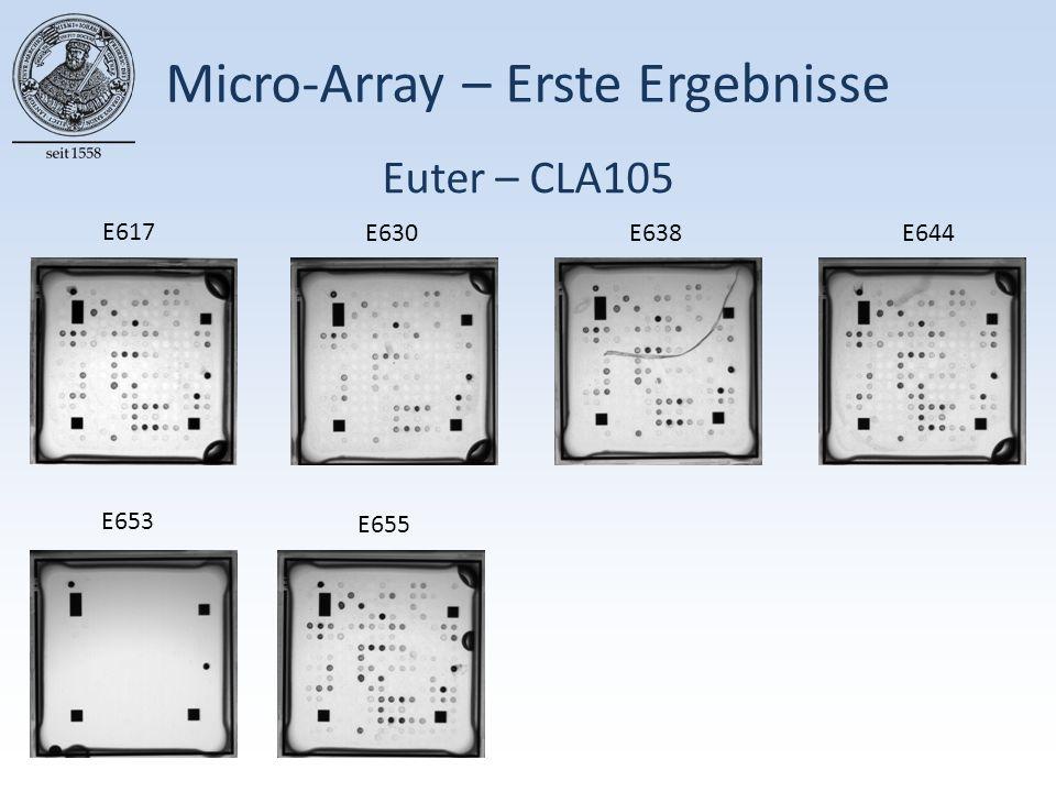 Euter – CLA105 Micro-Array – Erste Ergebnisse E617 E630E638E644 E653 E655