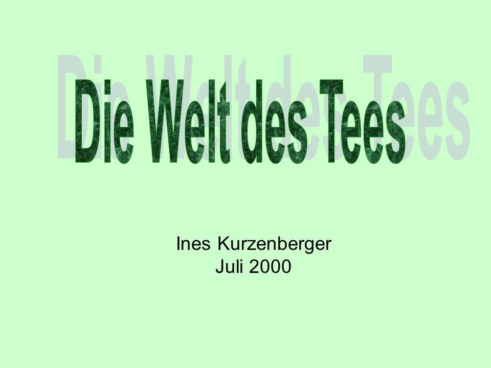 Ines Kurzenberger Juli 2000