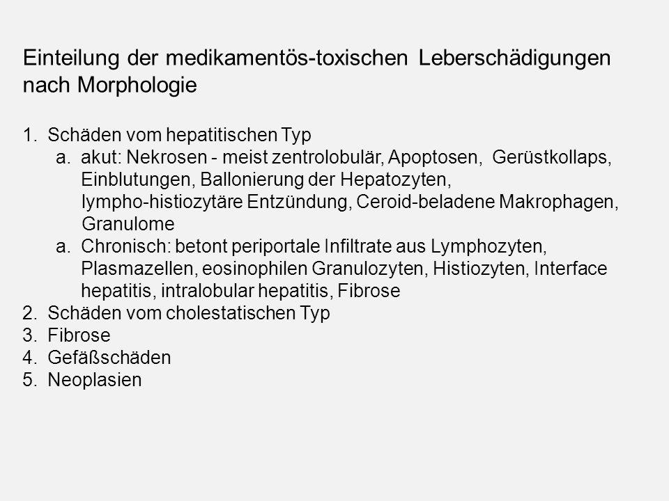 Einteilung der medikamentös-toxischen Leberschädigungen nach Morphologie 1.Schäden vom hepatitischen Typ a.akut: Nekrosen - meist zentrolobulär, Apoptosen, Gerüstkollaps, Einblutungen, Ballonierung der Hepatozyten, lympho-histiozytäre Entzündung, Ceroid-beladene Makrophagen, Granulome a.Chronisch: betont periportale Infiltrate aus Lymphozyten, Plasmazellen, eosinophilen Granulozyten, Histiozyten, Interface hepatitis, intralobular hepatitis, Fibrose 2.Schäden vom cholestatischen Typ 3.Fibrose 4.Gefäßschäden 5.Neoplasien