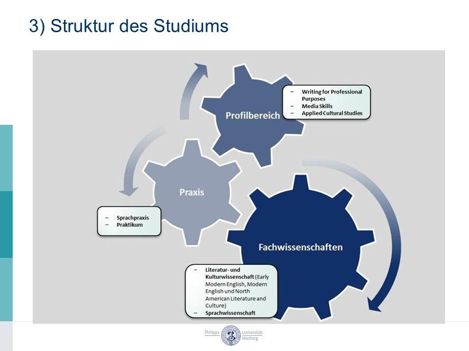 3) Struktur des Studiums