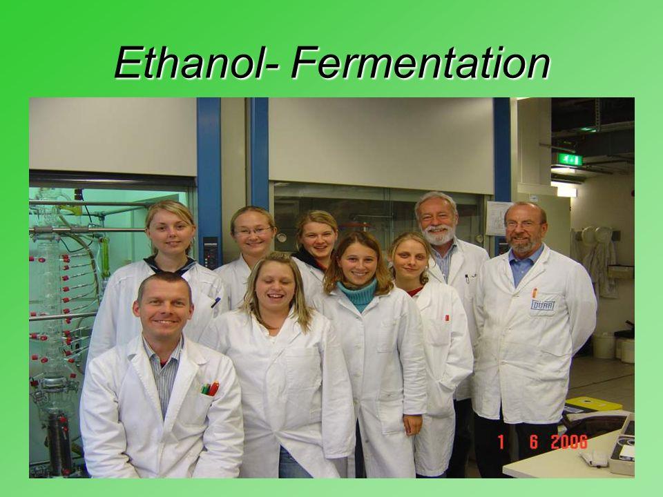 Ethanol- Fermentation