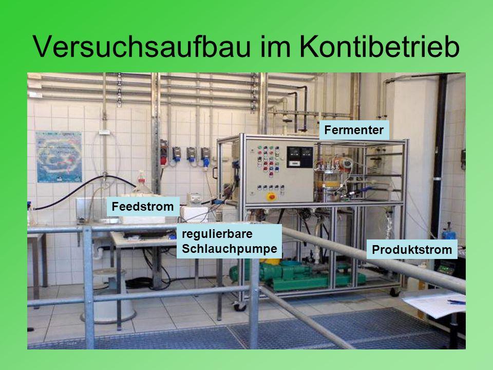 Versuchsaufbau im Kontibetrieb Feedstrom Produktstrom Fermenter regulierbare Schlauchpumpe