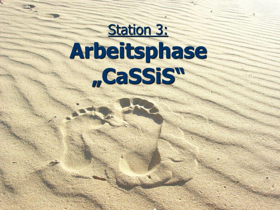 "Station 3: Arbeitsphase ""CaSSiS"