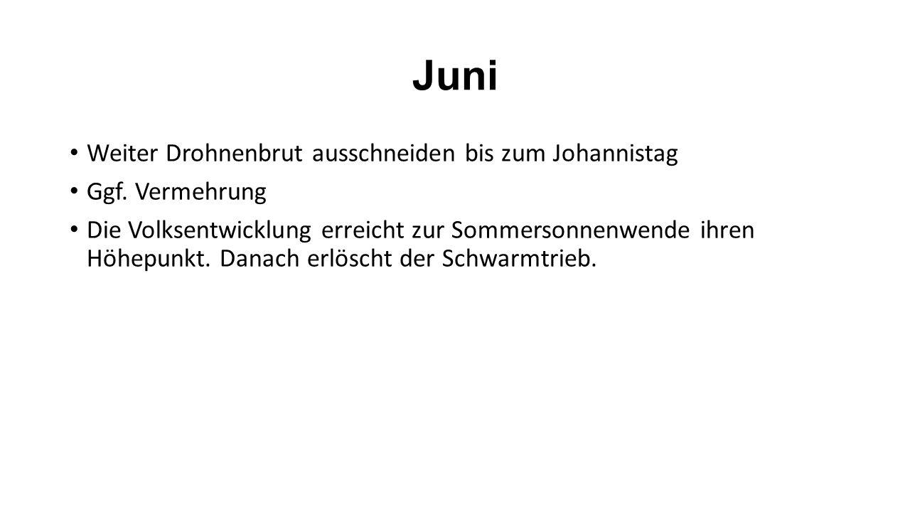 Juni Weiter Drohnenbrut ausschneiden bis zum Johannistag Ggf.