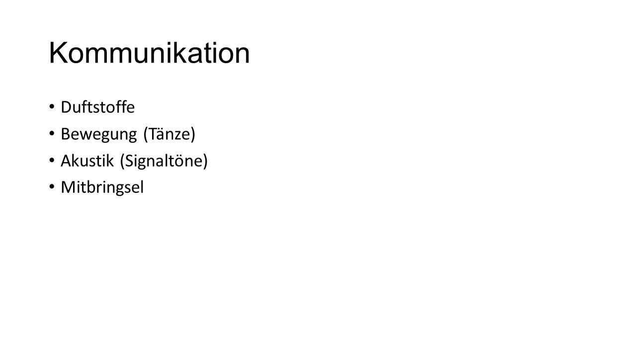 Kommunikation Duftstoffe Bewegung (Tänze) Akustik (Signaltöne) Mitbringsel