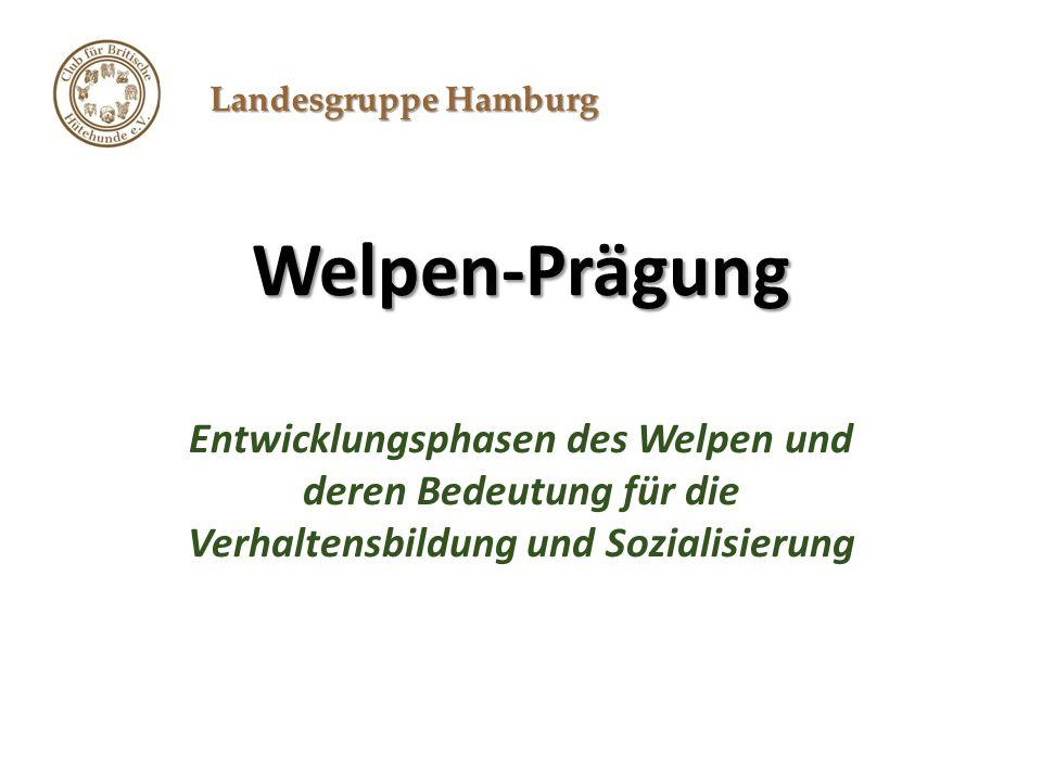 Landesgruppe Hamburg Welpen-Prägung Entwicklungsphasen des Welpen und deren Bedeutung für die Verhaltensbildung und Sozialisierung