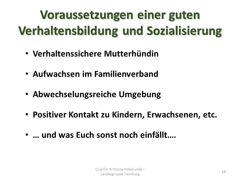 Voraussetzungen einer guten Verhaltensbildung und Sozialisierung Club für Britische Hütehunde - Landesgruppe Hamburg 18 Verhaltenssichere Mutterhündin Aufwachsen im Familienverband Abwechselungsreiche Umgebung Positiver Kontakt zu Kindern, Erwachsenen, etc.