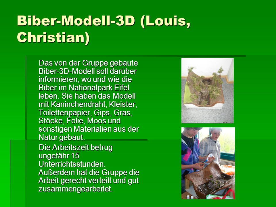 Biber-Modell-3D (Louis, Christian) Das von der Gruppe gebaute Biber-3D-Modell soll darüber informieren, wo und wie die Biber im Nationalpark Eifel leben.