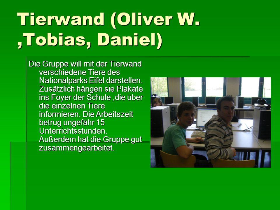 Tierwand (Oliver W.,Tobias, Daniel) Die Gruppe will mit der Tierwand verschiedene Tiere des Nationalparks Eifel darstellen.