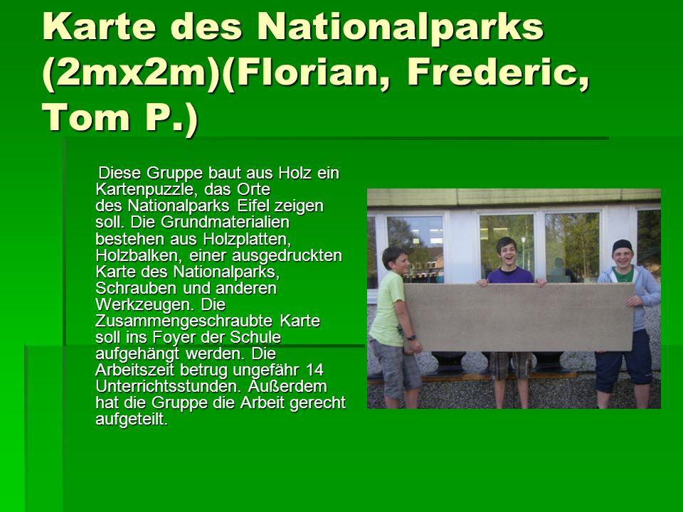 Karte des Nationalparks (2mx2m)(Florian, Frederic, Tom P.) Diese Gruppe baut aus Holz ein Kartenpuzzle, das Orte des Nationalparks Eifel zeigen soll.
