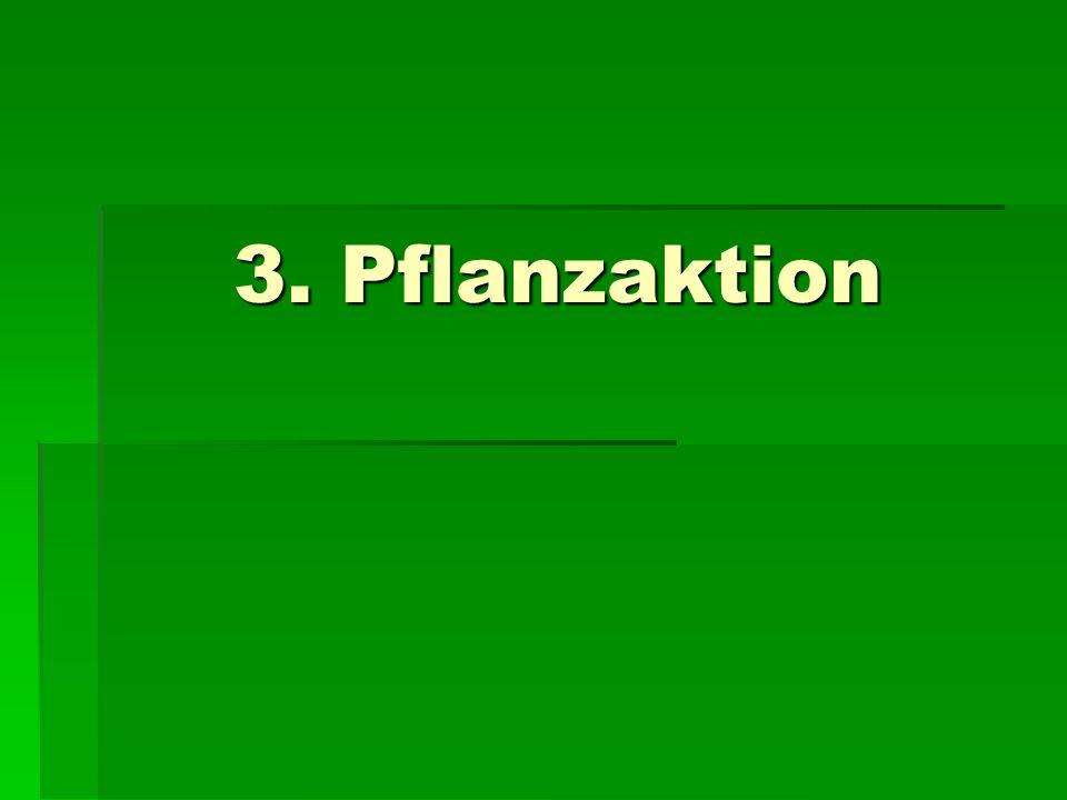 3. Pflanzaktion 3. Pflanzaktion