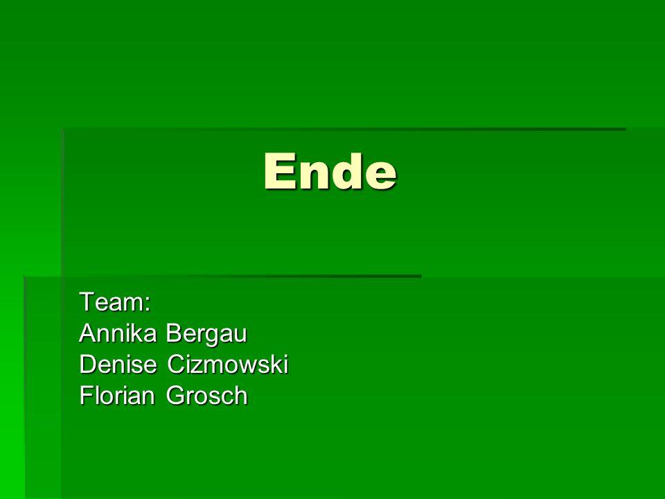 Ende Ende Team: Annika Bergau Denise Cizmowski Florian Grosch