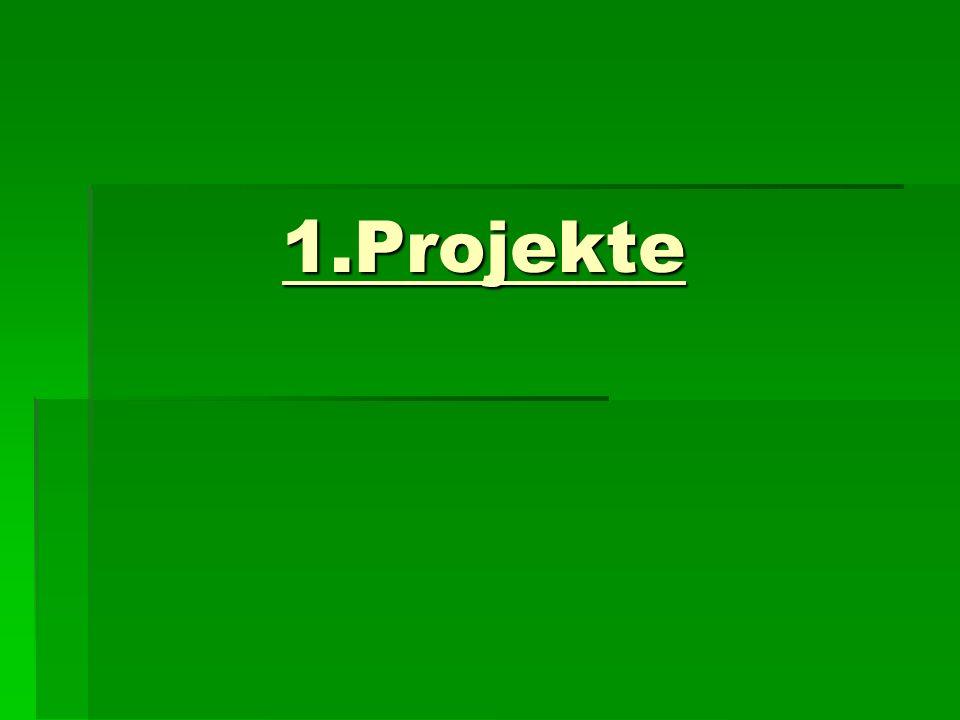 1.Projekte 1.Projekte