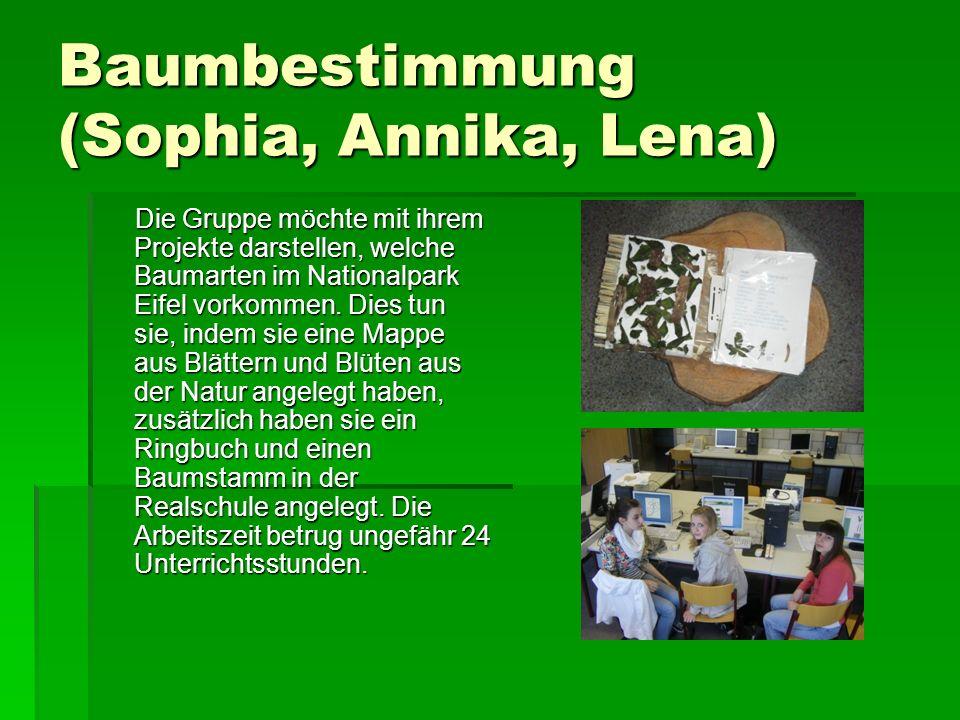 Baumbestimmung (Sophia, Annika, Lena) Die Gruppe möchte mit ihrem Projekte darstellen, welche Baumarten im Nationalpark Eifel vorkommen.