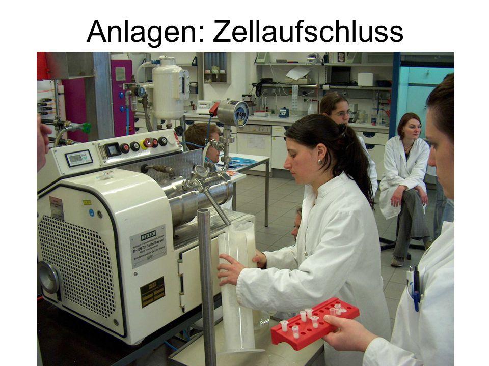 Anlagen: Zellaufschluss