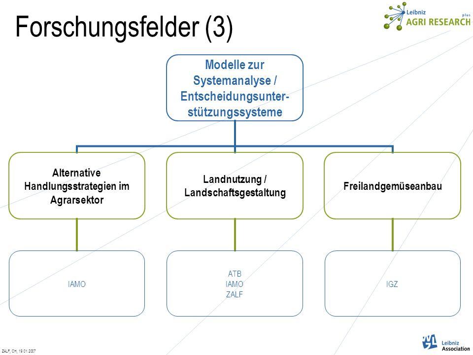 ZALF, CH, 19.01.2007 Modelle zur Systemanalyse / Entscheidungsunter- stützungssysteme Alternative Handlungsstrategien im Agrarsektor IAMO Landnutzung / Landschaftsgestaltung ATB IAMO ZALF Freilandgemüseanbau IGZ Forschungsfelder (3)