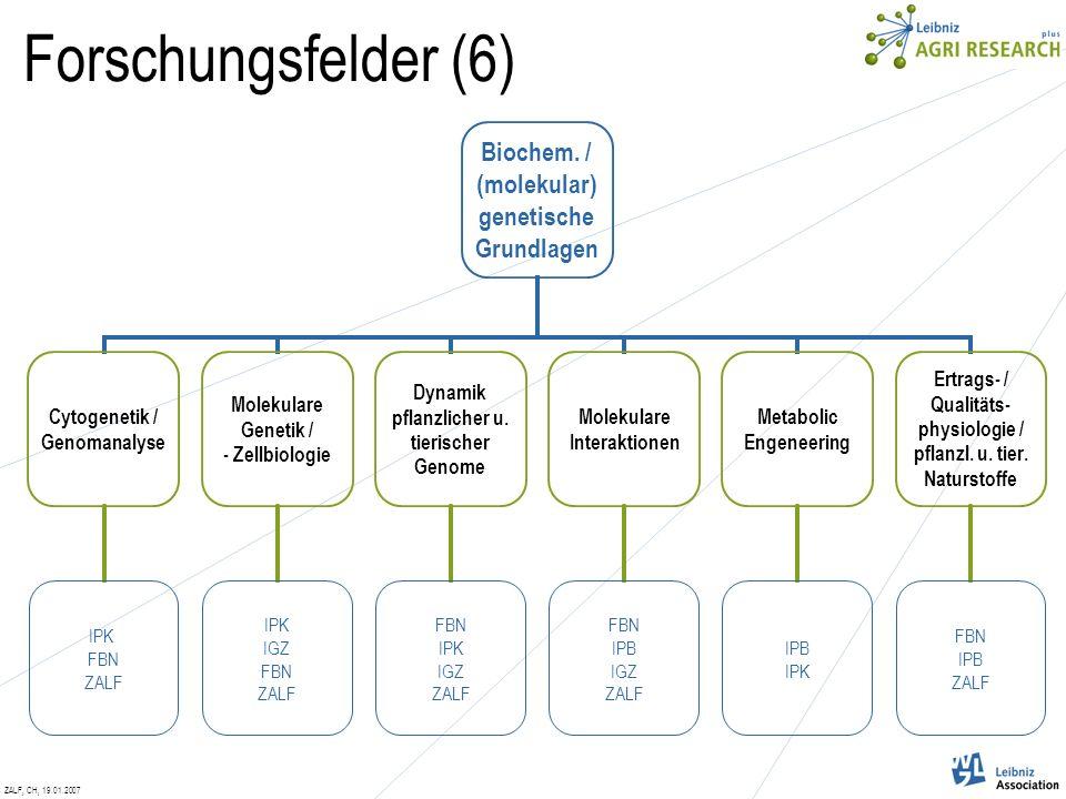 ZALF, CH, 19.01.2007 Forschungsfelder (6) Biochem.