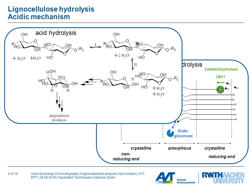 Anion Exchange Chromatography in lignocellulosics analysis | Nico Anders | AVT- EPT | | Separation Techniques | Valencia, Spain Lignocellulose hydrolysis Acidic mechanism 4 of 15 non- reducing end reducing end crystalline amorphous enzymatic hydrolysis acid hydrolysis