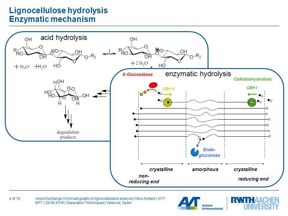 Anion Exchange Chromatography in lignocellulosics analysis | Nico Anders | AVT- EPT | | Separation Techniques | Valencia, Spain Lignocellulose hydrolysis Enzymatic mechanism 4 of 15 non- reducing end reducing end crystalline amorphous enzymatic hydrolysis acid hydrolysis
