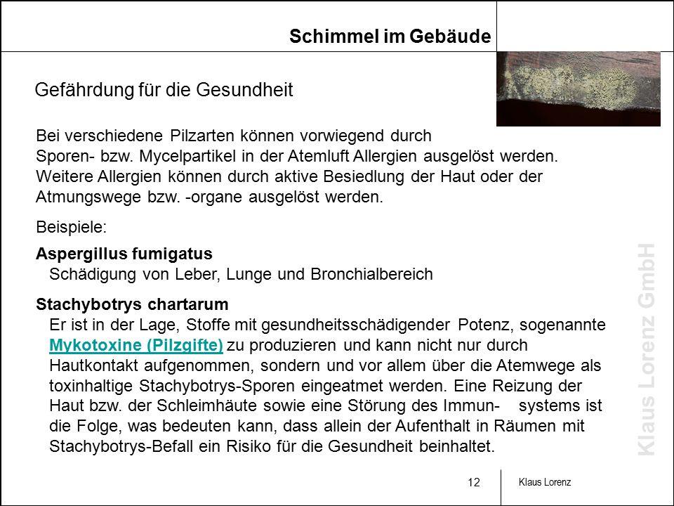 Klaus Lorenz GmbH 12 Klaus Lorenz Bei verschiedene Pilzarten können vorwiegend durch Sporen- bzw.