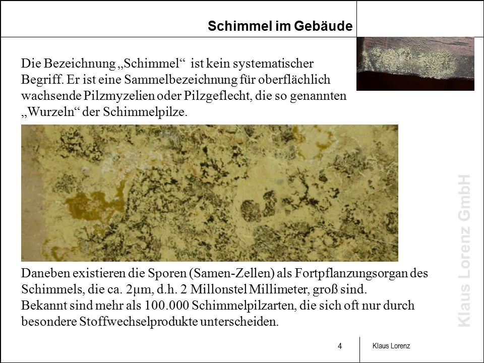 """Klaus Lorenz GmbH 4 Klaus Lorenz Die Bezeichnung """"Schimmel ist kein systematischer Begriff."""