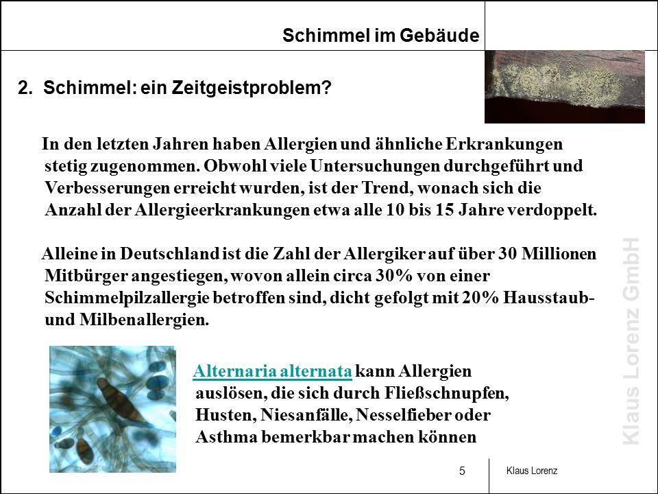 Klaus Lorenz GmbH 5 Klaus Lorenz 2. Schimmel: ein Zeitgeistproblem.