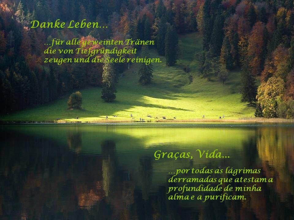Danke Leben… …für all den Schmerz der mich zu dem machte was ich heute bin – wer ich heute bin. Graças, Vida... …por toda dor que me tornou o que sou