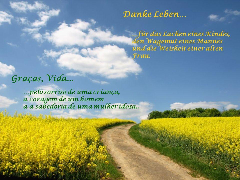 Danke Leben… …für alle Herausforderungen die reifen helfen. …für die Freunde und Wegbegleiter. Graças, Vida... …por todos os desafios que me ajudam a