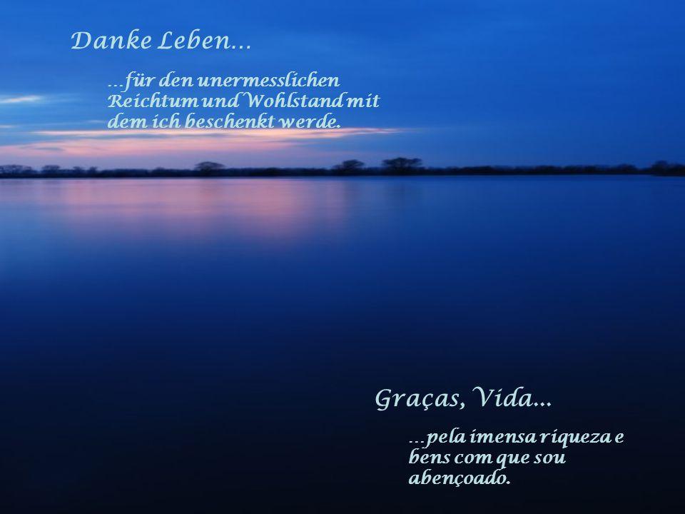 Danke Leben… …für die Liebe und das Vertrauen, das ich erfahren und verschenken darf. Graças, Vida... …pelo amor e a confiança, que eu recebo e devo p