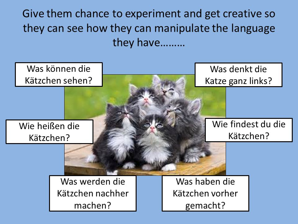 Give them chance to experiment and get creative so they can see how they can manipulate the language they have……… Was können die Kätzchen sehen? Wie h
