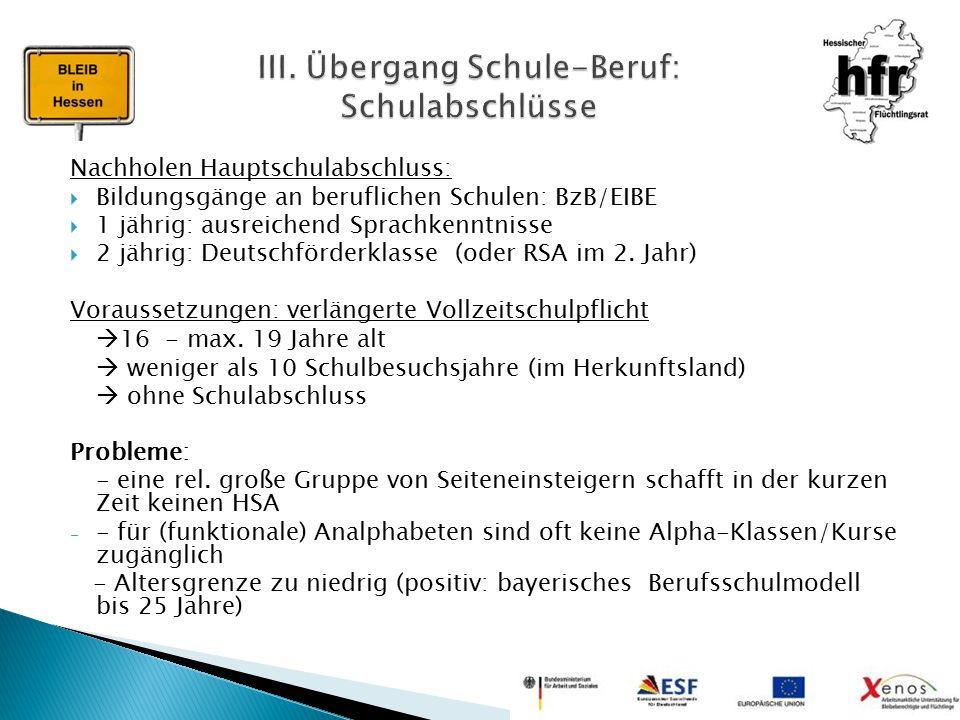 Nachholen Hauptschulabschluss:  Bildungsgänge an beruflichen Schulen: BzB/EIBE  1 jährig: ausreichend Sprachkenntnisse  2 jährig: Deutschförderklas