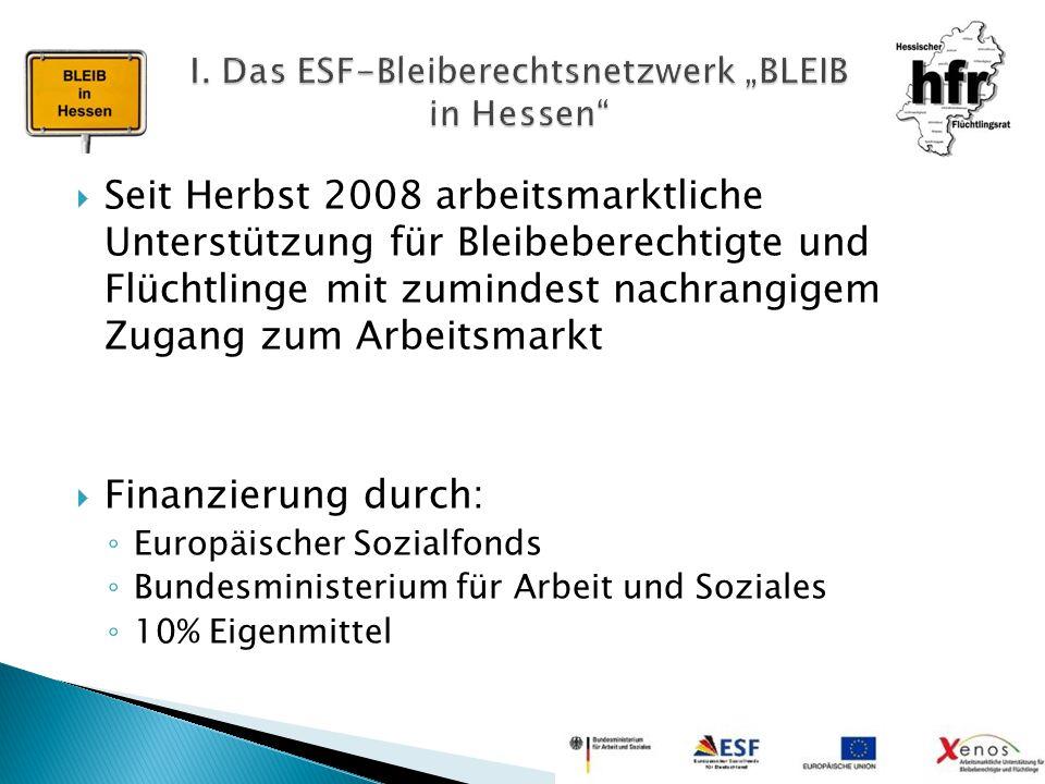  Seit Herbst 2008 arbeitsmarktliche Unterstützung für Bleibeberechtigte und Flüchtlinge mit zumindest nachrangigem Zugang zum Arbeitsmarkt  Finanzie