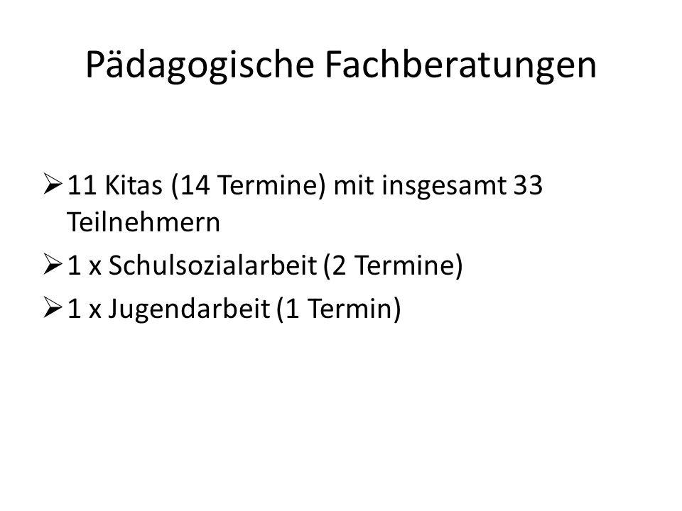 Pädagogische Fachberatungen  11 Kitas (14 Termine) mit insgesamt 33 Teilnehmern  1 x Schulsozialarbeit (2 Termine)  1 x Jugendarbeit (1 Termin)