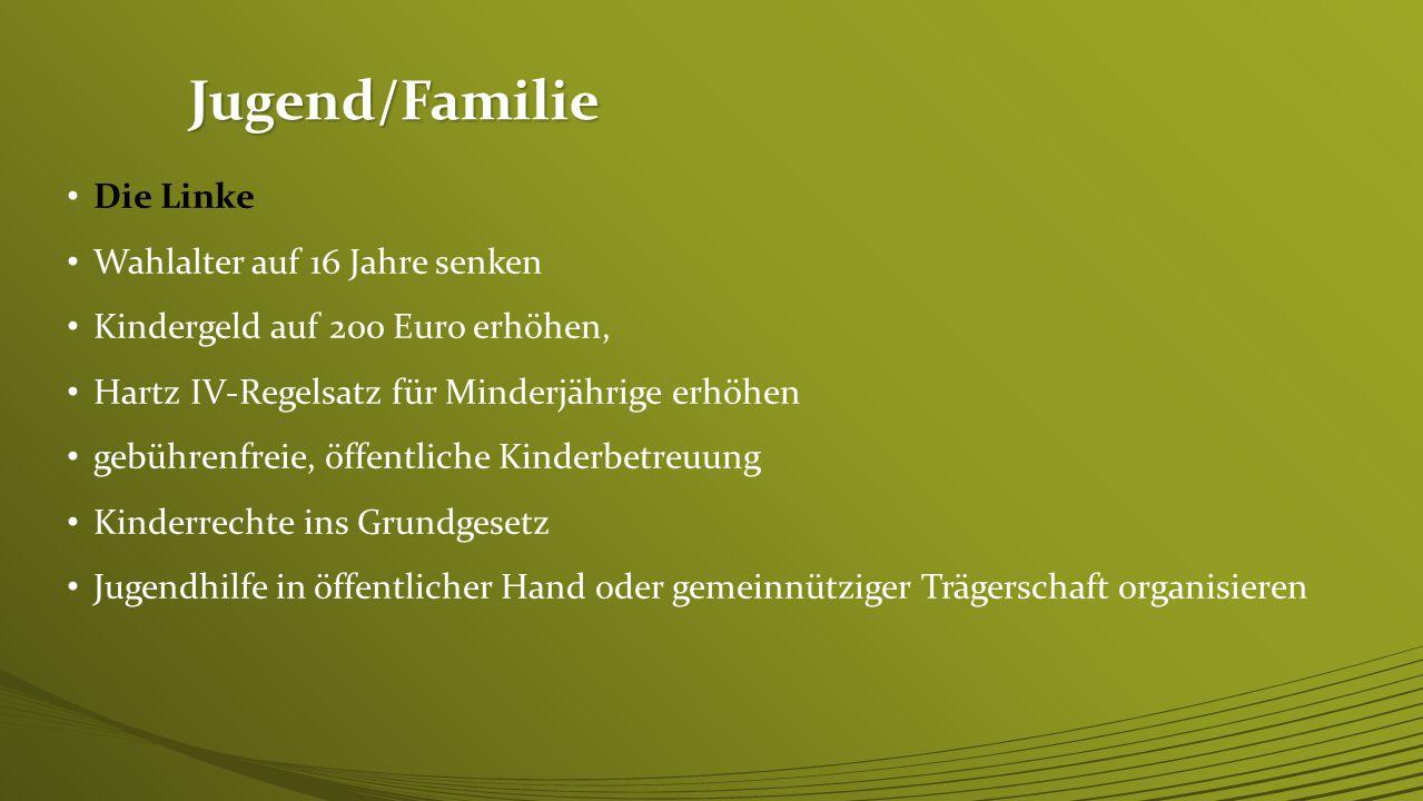 Jugend/Familie FDP Gleichstellung aller Lebensgemeinschaften Ausbau hochwertiger Betreuungsangebote Kindergeld auf 200 Euro erhöhen Jugendstrafrecht k