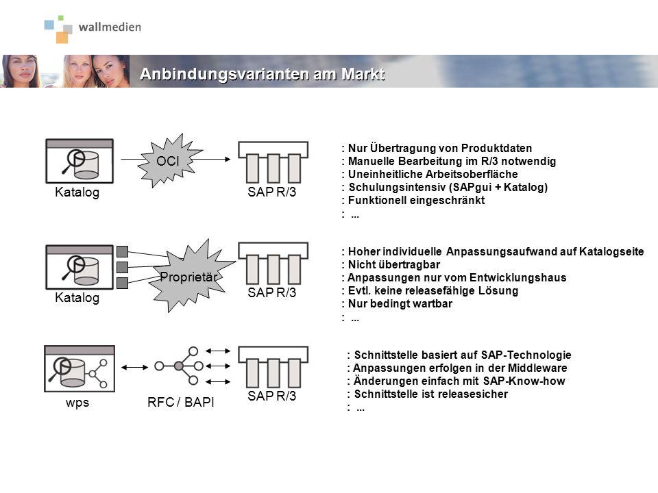 Anbindungsvarianten am Markt : Nur Übertragung von Produktdaten : Manuelle Bearbeitung im R/3 notwendig : Uneinheitliche Arbeitsoberfläche : Schulungs