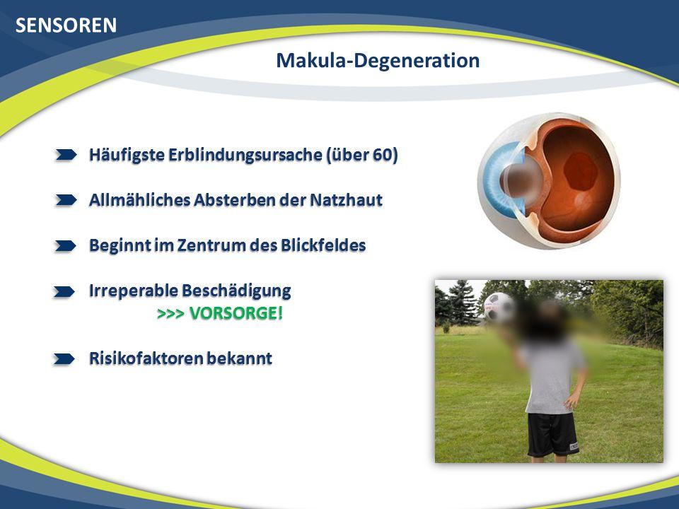 SENSOREN Makula-Degeneration Häufigste Erblindungsursache (über 60) Allmähliches Absterben der Natzhaut Beginnt im Zentrum des Blickfeldes Irreperable Beschädigung >>> VORSORGE.