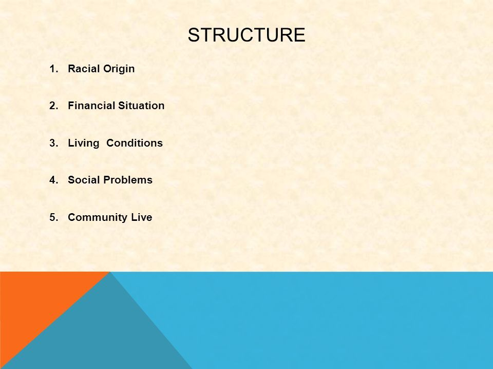 STRUCTURE 1.Racial Origin 2.Financial Situation 3.Living Conditions 4.Social Problems 5.Community Live