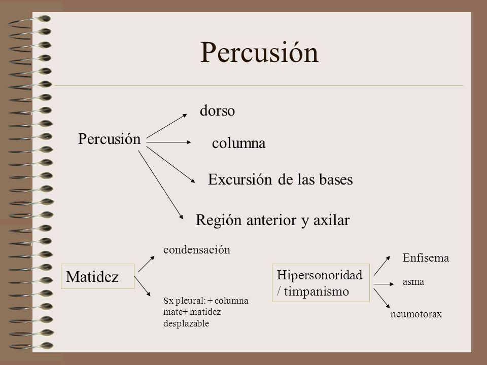 Percusión dorso columna Excursión de las bases Región anterior y axilar Matidez condensación Sx pleural: + columna mate+ matidez desplazable Hipersonoridad / timpanismo Enfisema asma neumotorax