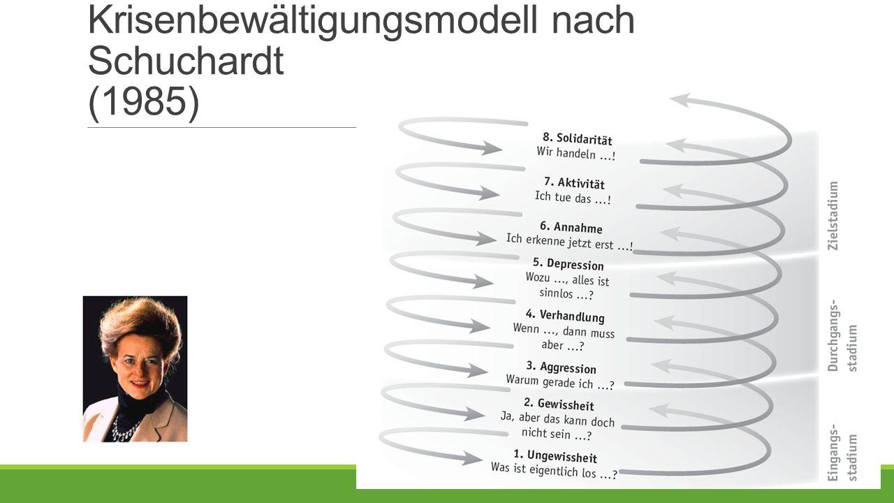 Krisenbewältigungsmodell nach Schuchardt (1985)