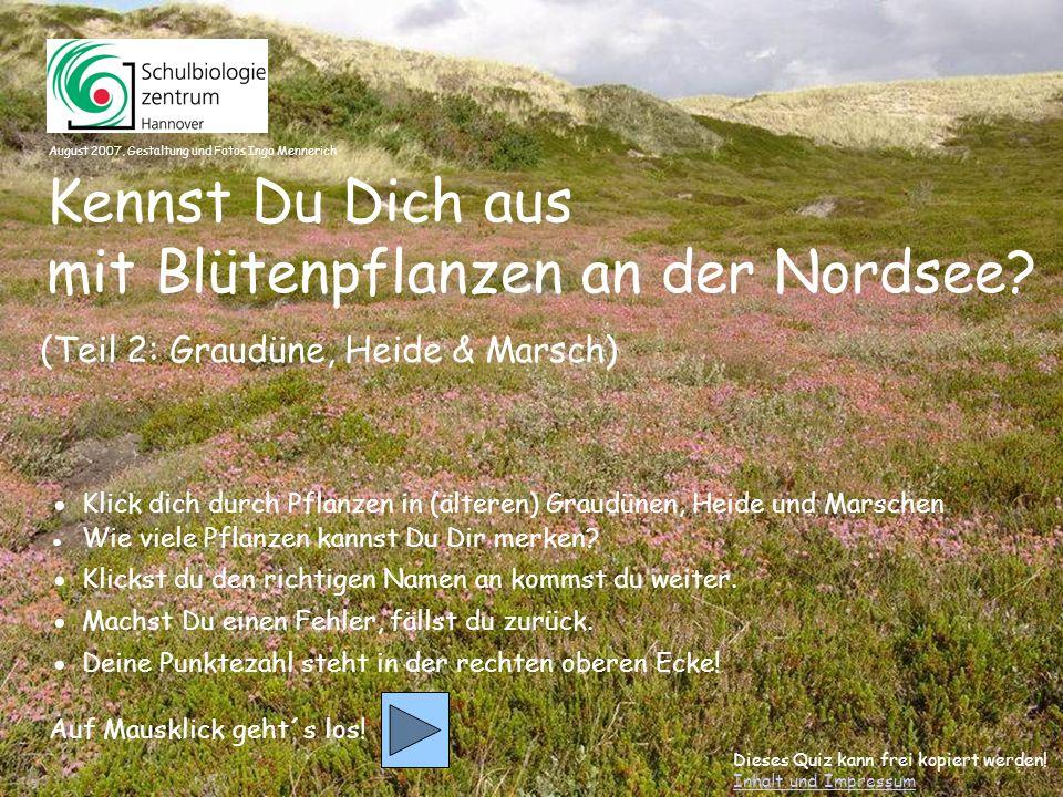 10 Hasen-Klee Besenheide Krähenbeere Glocken-Heide
