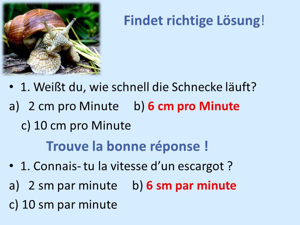 Findet richtige Lösung! 1. Weißt du, wie schnell die Schnecke läuft? a) 2 cm pro Minute b) 6 cm pro Minute c) 10 cm pro Minute Trouve la bonne réponse
