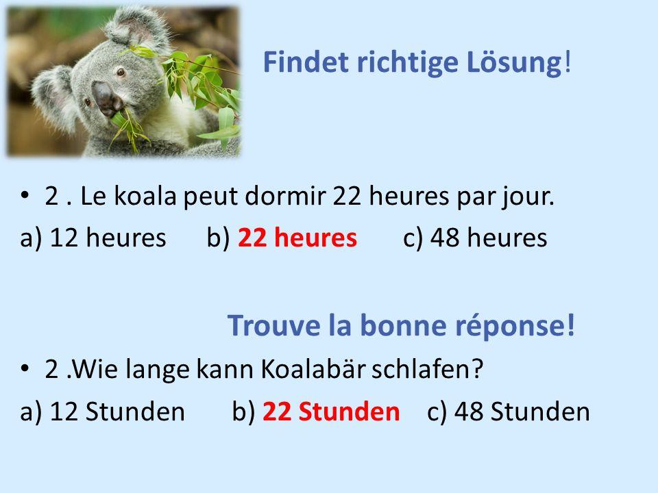 2. Le koala peut dormir 22 heures par jour. a) 12 heures b) 22 heures c) 48 heures Trouve la bonne réponse! 2.Wie lange kann Koalabär schlafen? a) 12