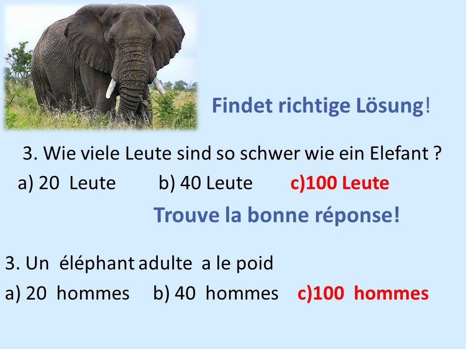 3. Wie viele Leute sind so schwer wie ein Elefant ? a) 20 Leute b) 40 Leute c)100 Leute Trouve la bonne réponse! Findet richtige Lösung! 3. Un éléphan