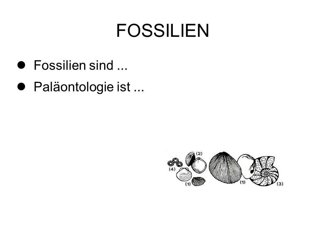 FOSSILIEN Fossilien sind... Paläontologie ist...