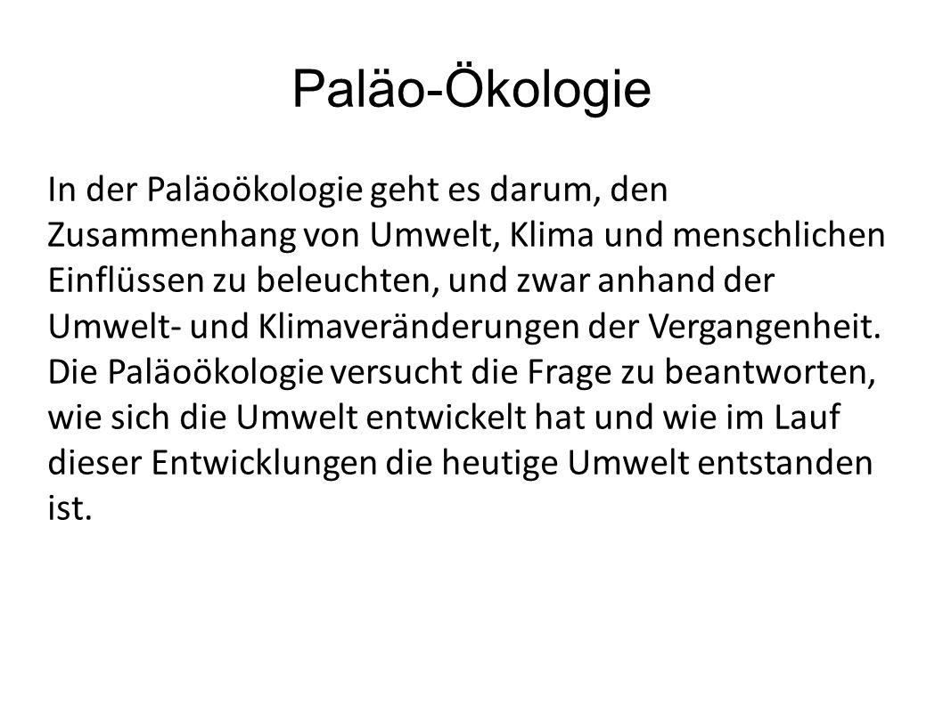 In der Paläoökologie geht es darum, den Zusammenhang von Umwelt, Klima und menschlichen Einflüssen zu beleuchten, und zwar anhand der Umwelt- und Klim