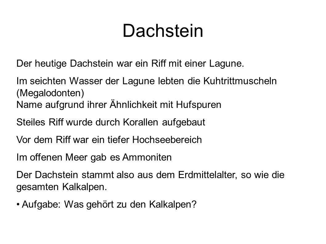 Offenes MeerRiffLagune Hallstätter Kalk Dachstein - Riffkalk Gebankter Dachsteinkalk Dachstein Dachstein - Riffkalk