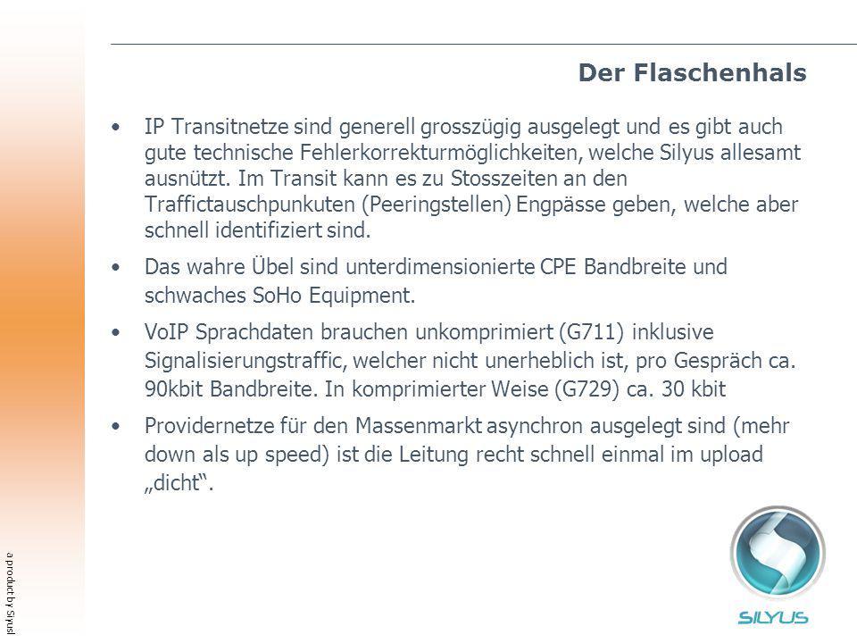 a product by Siyusl Der Flaschenhals IP Transitnetze sind generell grosszügig ausgelegt und es gibt auch gute technische Fehlerkorrekturmöglichkeiten, welche Silyus allesamt ausnützt.