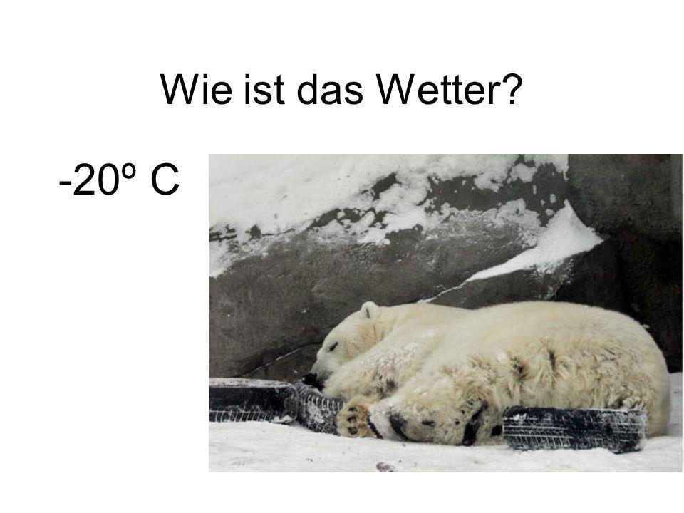 Wie ist das Wetter? -20º C