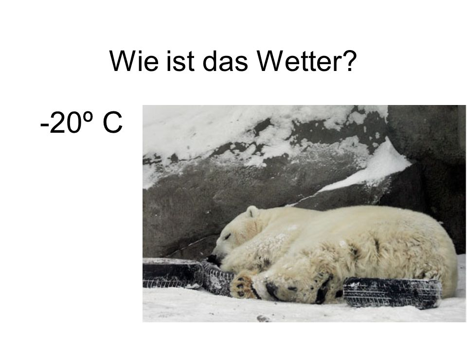 -20º C
