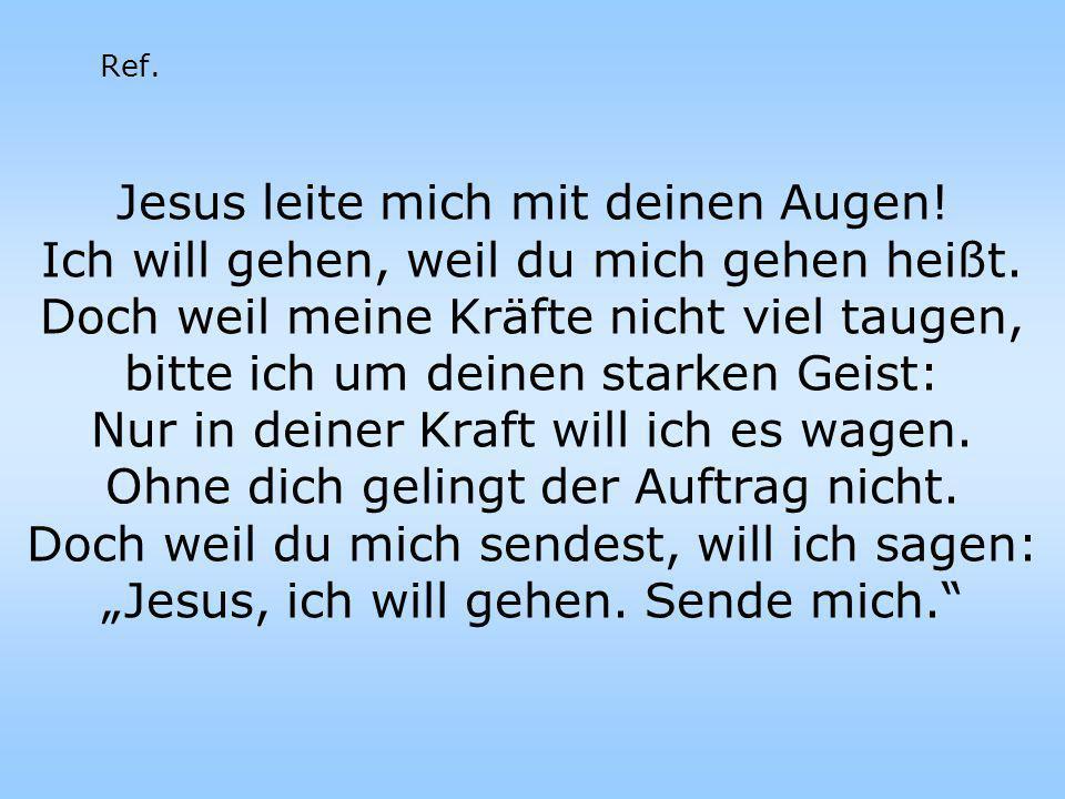 Jesus leite mich mit deinen Augen! Ich will gehen, weil du mich gehen heißt. Doch weil meine Kräfte nicht viel taugen, bitte ich um deinen starken Gei